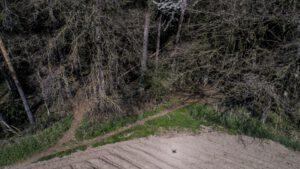 Trailwald010-scaled