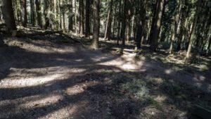 Trailwald018-scaled